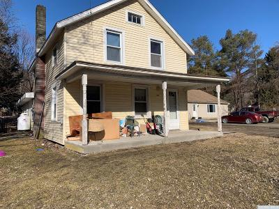 Dutchess County Multi Family Home For Sale: 6085 Route 22
