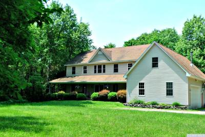 Dutchess County Single Family Home For Sale: 235 Fraleigh