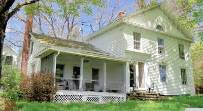 Albany County Single Family Home For Sale: 367 County Route 312
