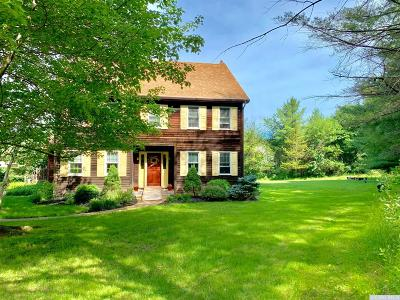 Albany County Single Family Home For Sale: 1012 County Route 403