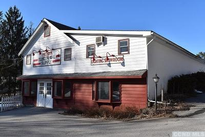 Red Hook NY Commercial For Sale: $695,000