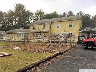 Catskill Multi Family Home For Sale: 4525 Route 32