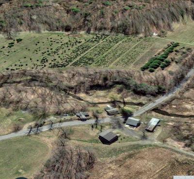 Rhinebeck NY Farm For Sale: $1,295,000
