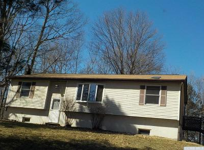 Catskill Single Family Home Accpt Offer Ok 2 Sho: 2531 Old Kings Road #L