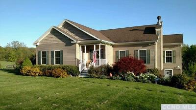 Columbia County Single Family Home For Sale: 1390 County Route 10