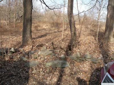 Dutchess County Residential Lots & Land For Sale: 177 Decker Road