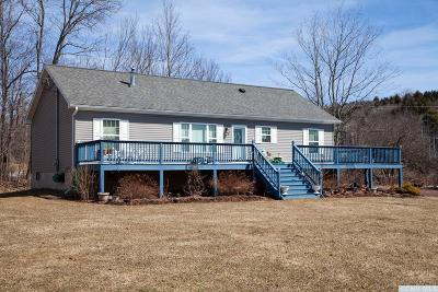 Windham Single Family Home For Sale: 102 County Rt 21