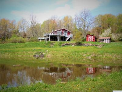 Greene County Single Family Home For Sale: 1932 Route 23c