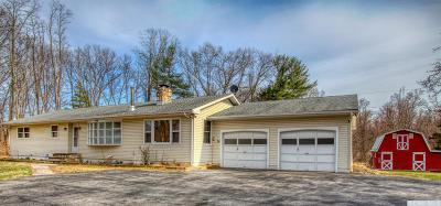 Dutchess County Single Family Home For Sale: 3455 Route 9g