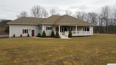 Greene County Single Family Home For Sale: 3339 County Rt 67