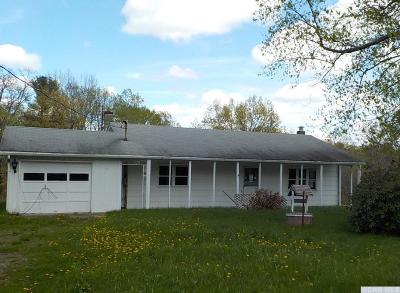 Columbia County Single Family Home For Sale: 713 Route 82