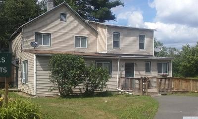 Greene County Multi Family Home For Sale: 53 Lake Mills Road