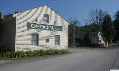 Greene County Multi Family Home For Sale: 597 Bross Street