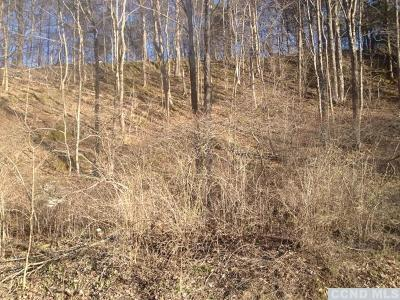 Catskill NY Residential Lots & Land For Sale: $9,900
