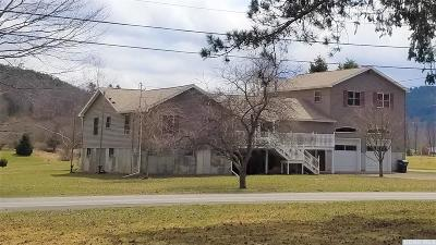 Prattsville Single Family Home For Sale: 112 Rt. 7