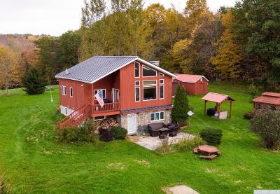 Conesville NY Single Family Home For Sale: $440,000