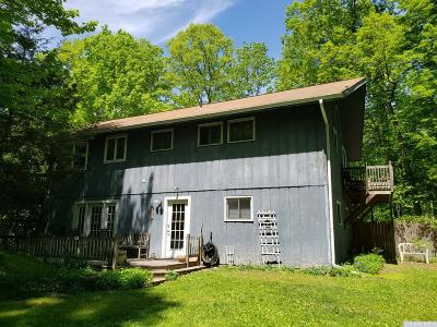 Greenville NY Single Family Home For Sale: $259,900