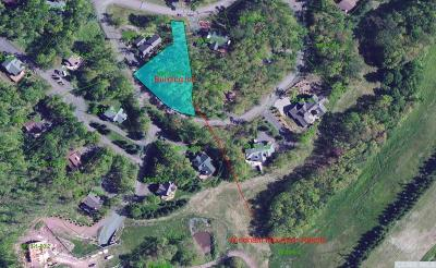 Windham NY Residential Lots & Land For Sale: $299,000