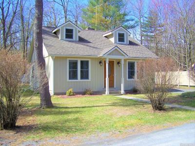 Cairo NY Single Family Home For Sale: $249,000