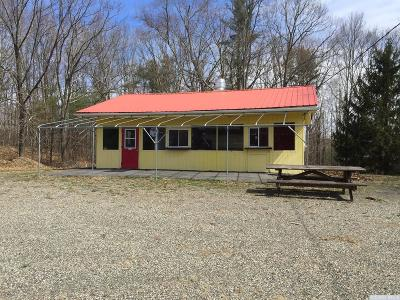 Greene County Commercial For Sale: 450 State Route 145