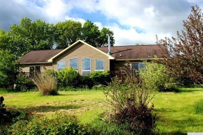Cornwallville NY Single Family Home For Sale: $249,900