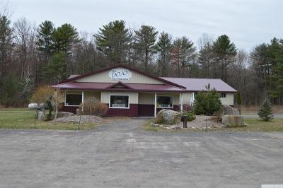 Greene County Commercial For Sale: 7485 Route 32