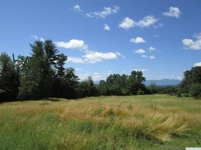 Coxsackie NY Residential Lots & Land For Sale: $134,900