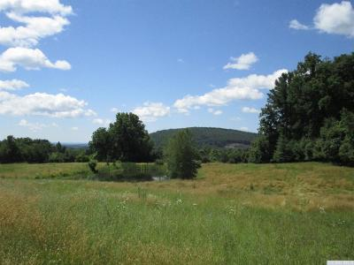Coxsackie NY Residential Lots & Land For Sale: $129,900