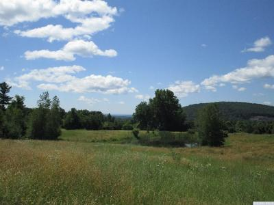 Coxsackie NY Residential Lots & Land For Sale: $249,900