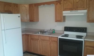 Cairo NY Rental For Rent: $875