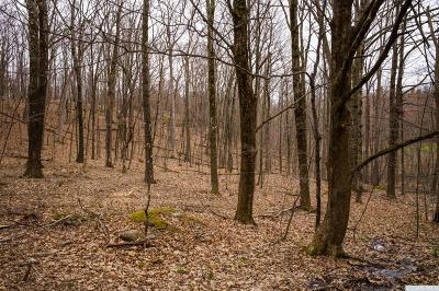 Austerlitz NY Residential Lots & Land For Sale: $50,000