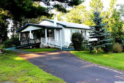 Cornwallville NY Single Family Home For Sale: $134,900