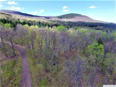 Windham Residential Lots & Land For Sale: White Birch Lane
