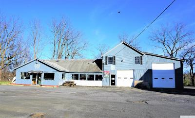 Greene County Commercial For Sale: 80 Maple Ave