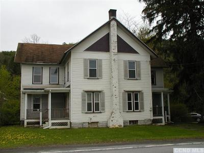 Berne NY Single Family Home For Sale: $145,000