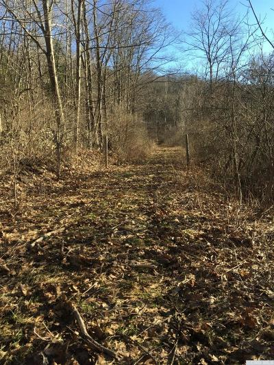 Rensselaerville NY Residential Lots & Land For Sale: $15,000