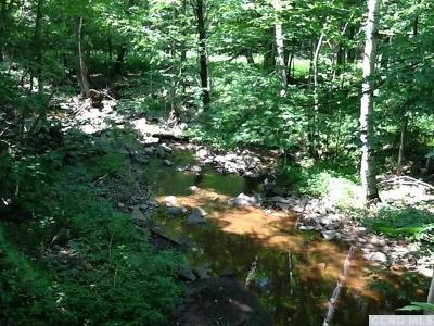 Windham NY Residential Lots & Land For Sale: $115,000