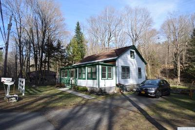 Austerlitz NY Single Family Home For Sale: $195,000