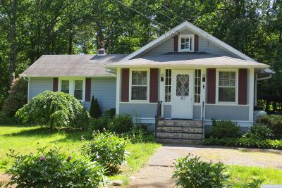 Palenville NY Single Family Home For Sale: $179,900