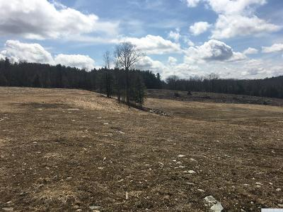 Rensselaer County Residential Lots & Land For Sale: Gentile Road