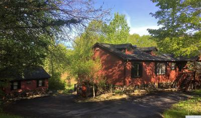 Greene County Single Family Home For Sale: 41 Tommy Trail
