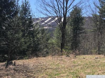 Windham Residential Lots & Land For Sale: 1 Thunderbird Terrace