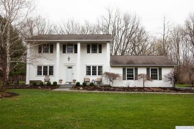 Kinderhook Single Family Home For Sale: 909 Cr 28