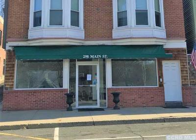 Greene County Commercial For Sale: 296 Main Street