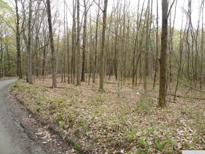 Rensselaer County Residential Lots & Land For Sale: Dusenberry Hill Road