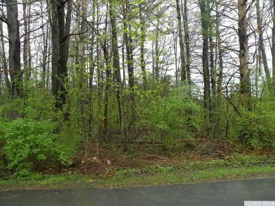 Athens NY Residential Lots & Land For Sale: $37,000