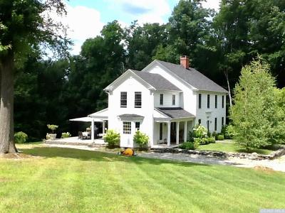 Dutchess County Single Family Home For Sale: 1335 Chestnut Ridge Road