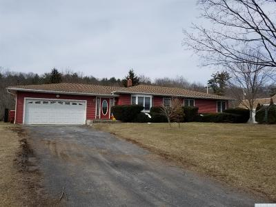 Catskill Single Family Home For Sale: 4953 Route 32