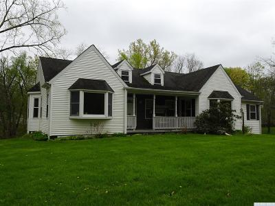 Columbia County Single Family Home For Sale: 20 Route 217