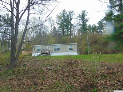 Middleburgh NY Single Family Home For Sale: $104,000